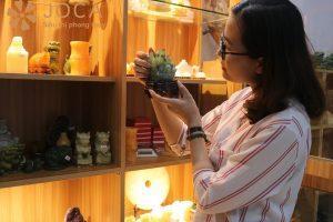 Cảm nhận của chị Phượng khi mua hàng tại JOCA